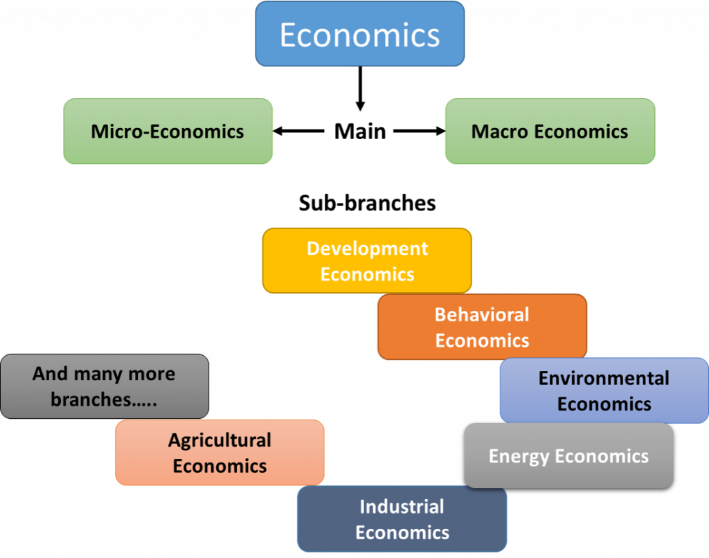 Figure 1 Branches  of Economics by Subject